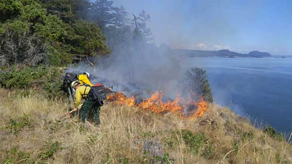 Park, DNR, and District 13 firefighters try to stop the advancing flames on Hope Island.