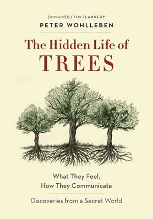 The Hidden Life of Trees: A new book